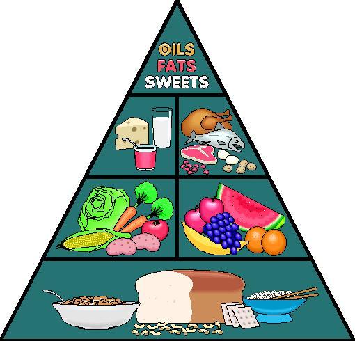 inabis 98 bio nutri interactive guide food pyramid